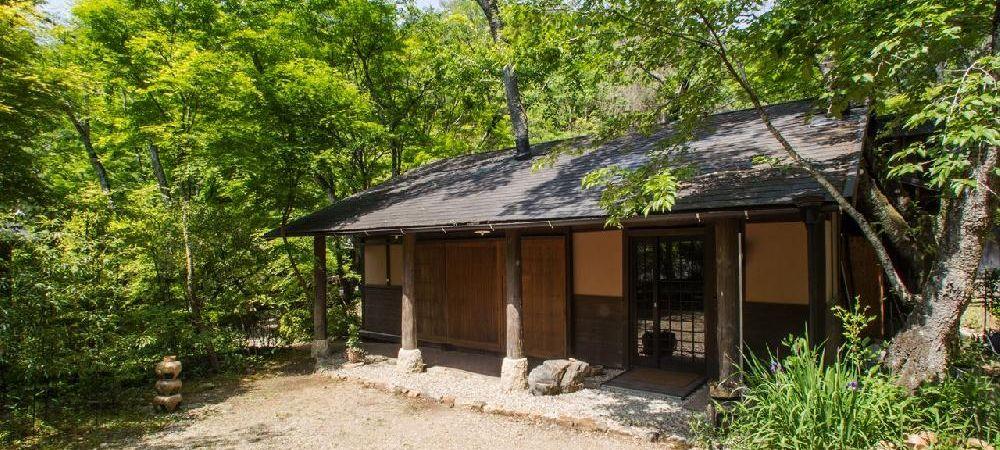 複合施設 アルティスト・ビラージュ  桜の木が屋根から生えてる 常設ギャラリー