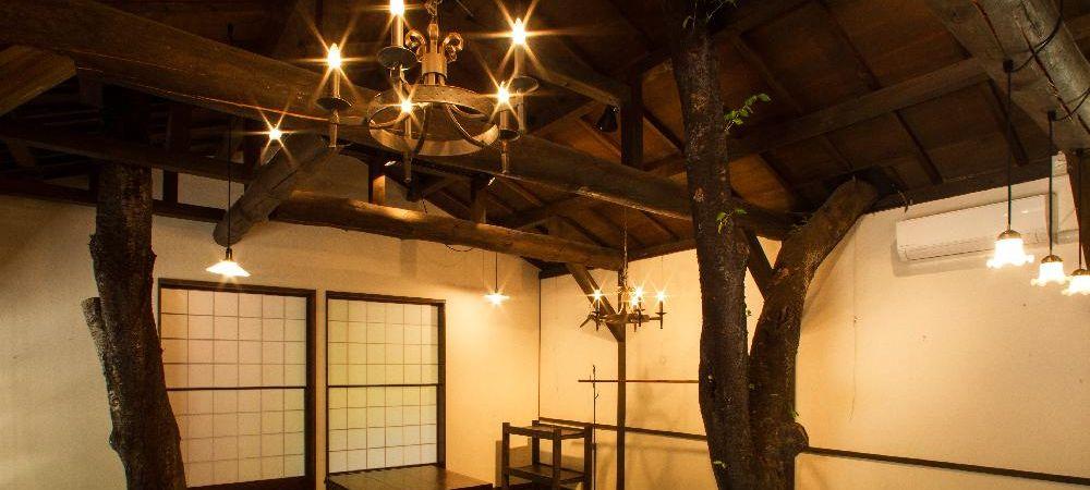 複合施設 アルティスト・ビラージュ 常設ギャラリー内部 元気に生きてる桜の木と仲良くやっています。
